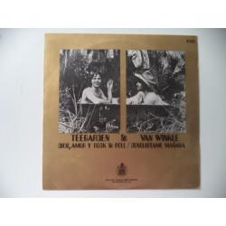 TEEGARDEN & VAN WINKLE